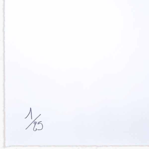 dont-call-me-daisy-numbered-lithograph-amelie-bertrand