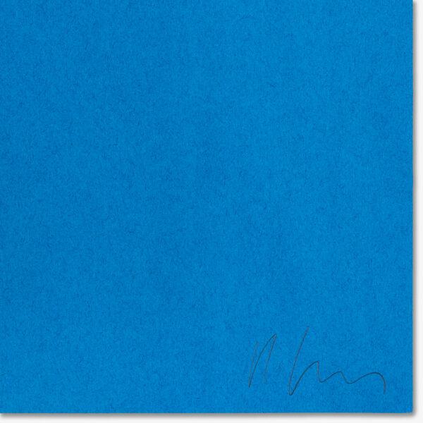 tamanoir-denis-savary-silkscreen-limited-edition-artist-signature